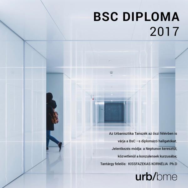 BSC DIPLOMA 2017 B