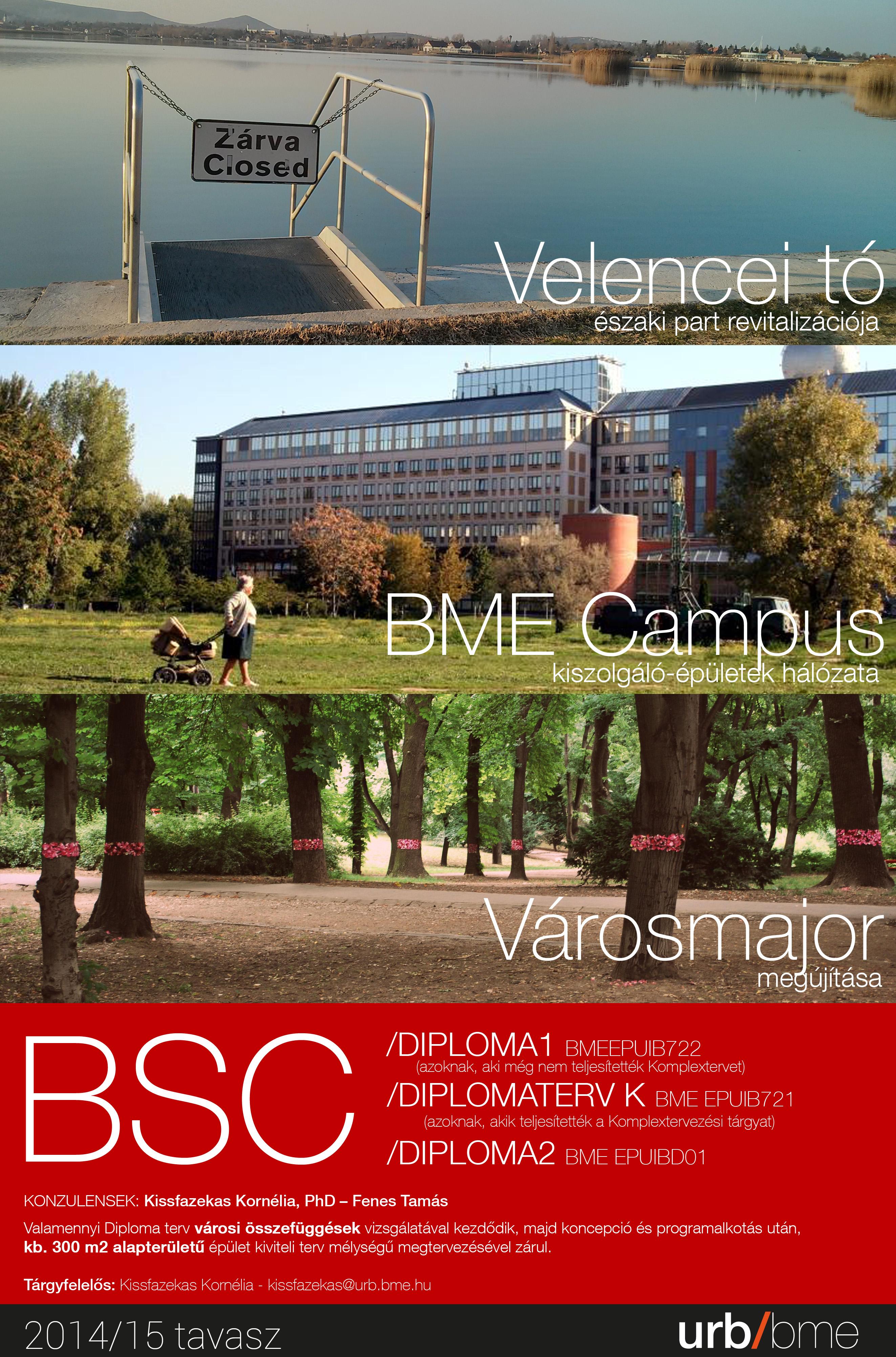 BSC DIPLOMA2015